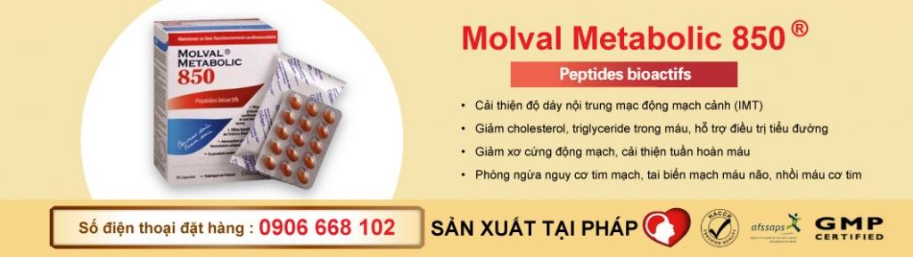 Molval metabolic 850 J-Kendai